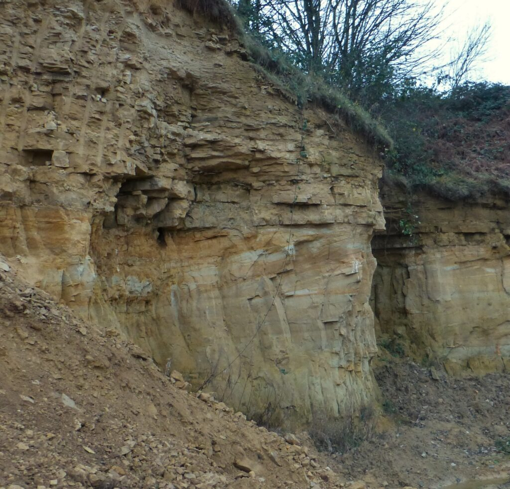 Fig 12 Dune bedded, Permian sandstone. Holywell. Glasshoughton