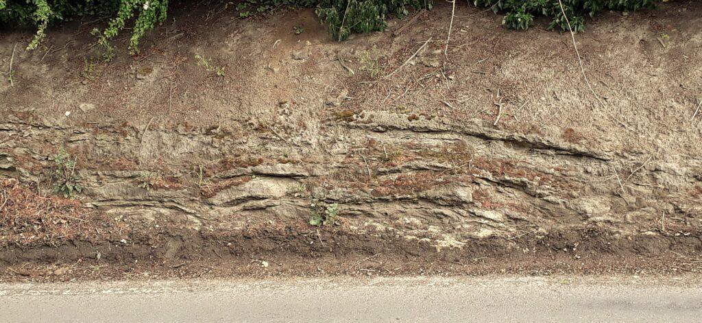 Fig 33 Stromatolite Domes. Aberford