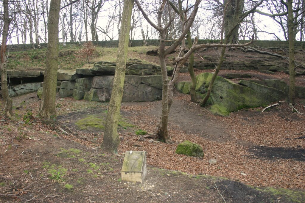 Fig 42 A small quarry in Millstone Grit Group, Rough Rock gritstones. Roundhay Park